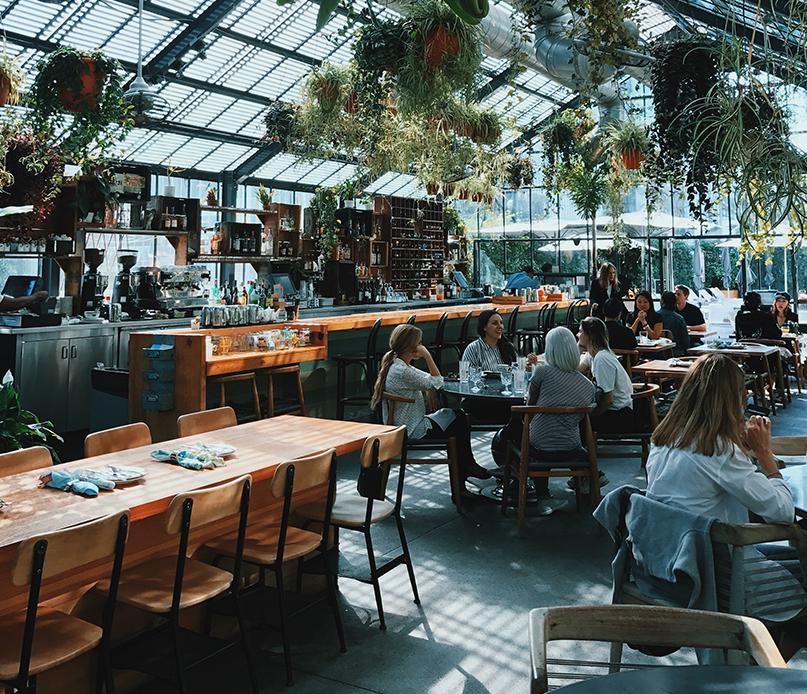 restaurant with plants