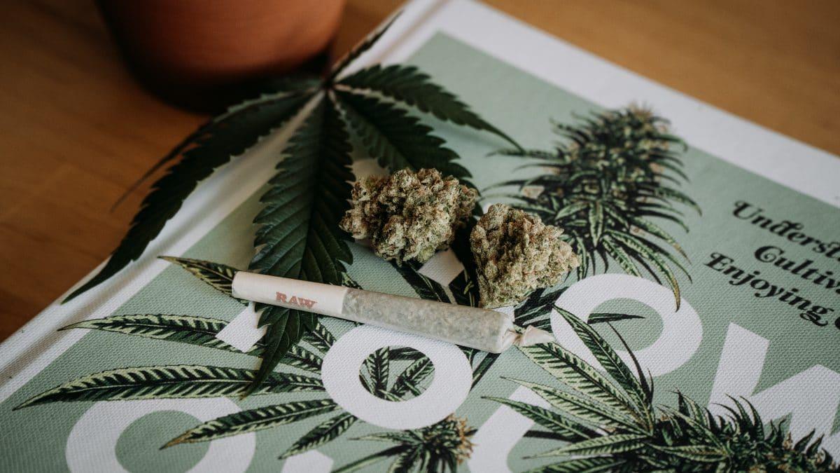 cannabis attestation form